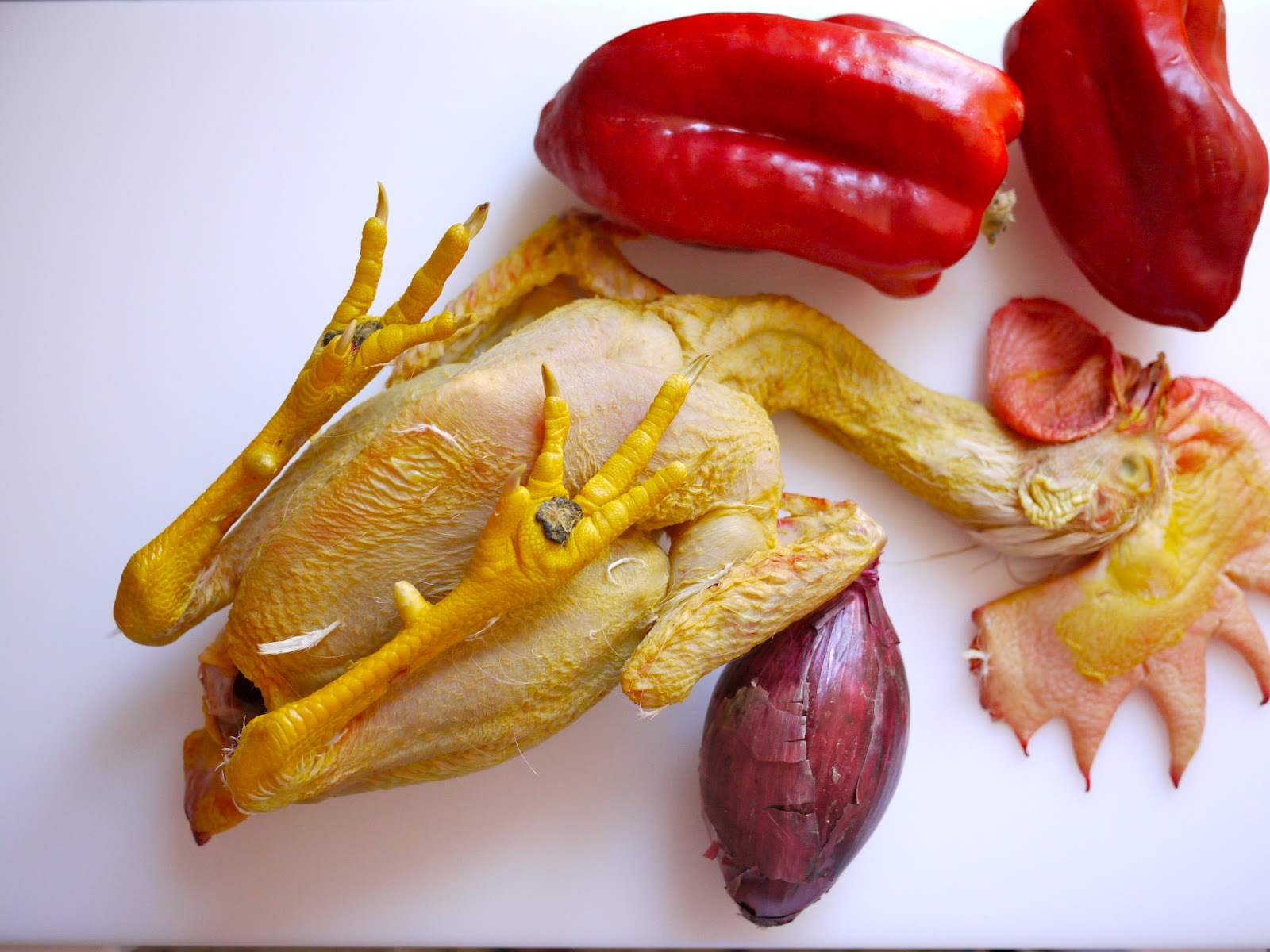 galletto livornese con i peperoni | panbagnato - Come Cucinare Il Gallo