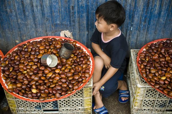 ChestnutsellerMaeSot
